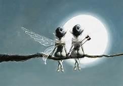 Rencontre avec les fées